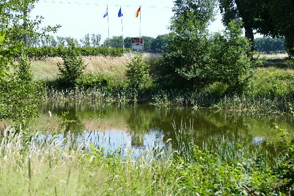 HoReCa op 18.705m² eigen grond met 6.000m² vis- / vaar-/ zwemwater foto 6