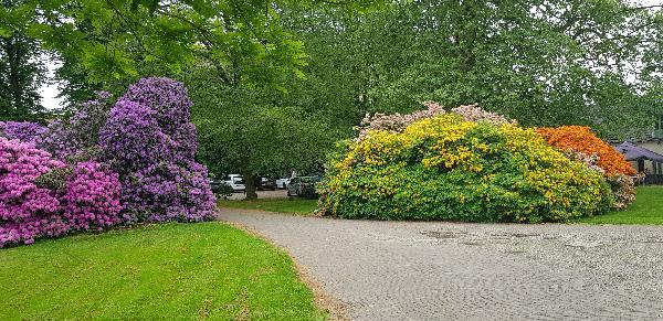 GERESERVEERD - Bistro het Koetshuis Enschede 450 m² Horeca groot terras en park foto 29